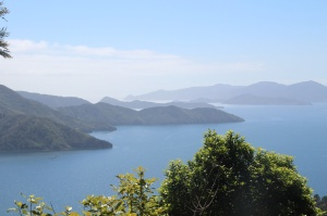 Stunning vistas over the Marlborough Sounds from one of the many vantage points along the Queen Charlotte Track.