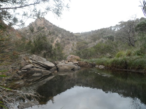 Reflections in the water of the stream at the bottom of Werribee Gorge.