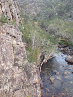 The most difficult spot to climb over on the Werribee Gorge Track.