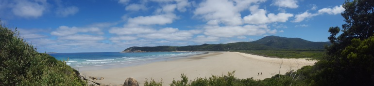 Looking out over Norman Beach, Wilsons Promontory towards Norman Point and Little Oberon Bay.