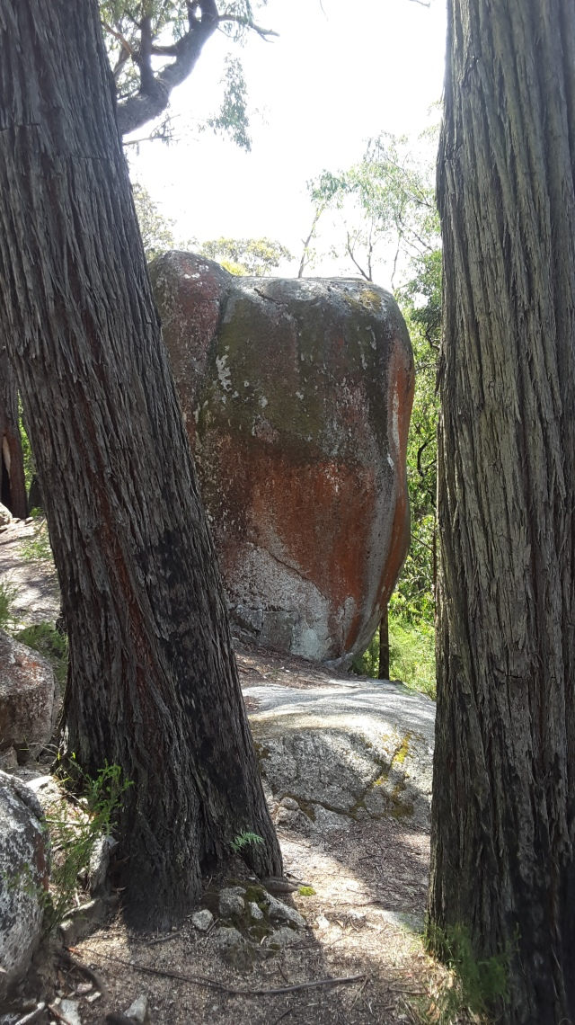 Four Brothers Rocks in the Bunyip State Park.