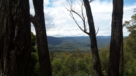 Views out over the valley from the Four Brothers Rocks.